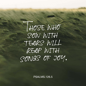 Verse image for Nick Vogel's Psalms 126:5 Devotional