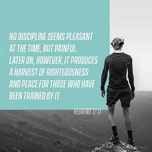 Verse image for Nick Vogel's How to be Disciplined devotional on Hebrews 12:11