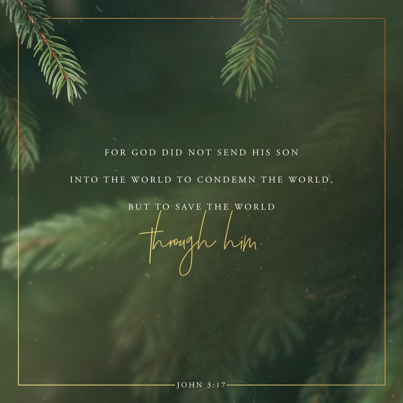 Verse image for Nick Vogel's John 3:17 Devotional