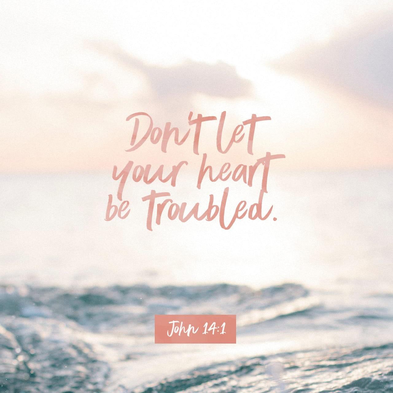 Verse image for Nick Vogel's John 14:1 Devotional